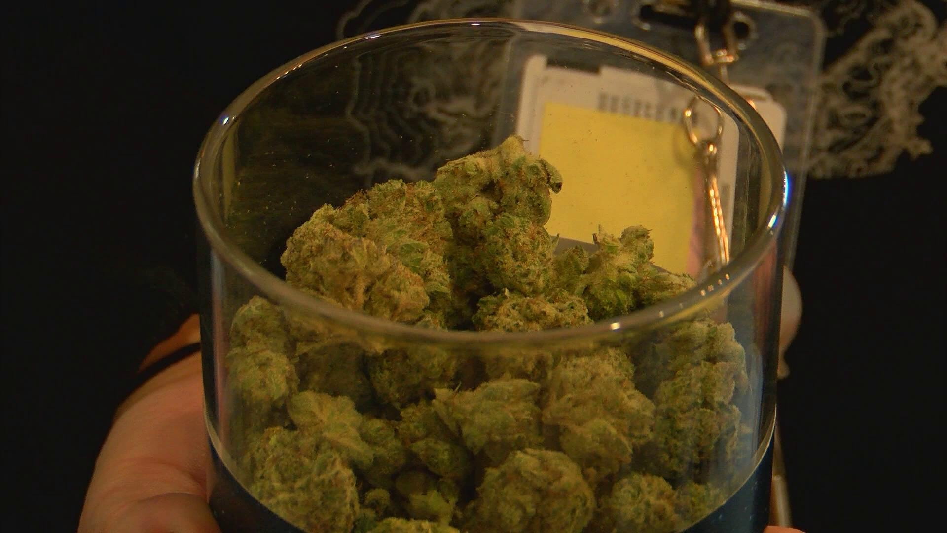 Recreational pot on its way to Henderson (KSNV file)<p></p>