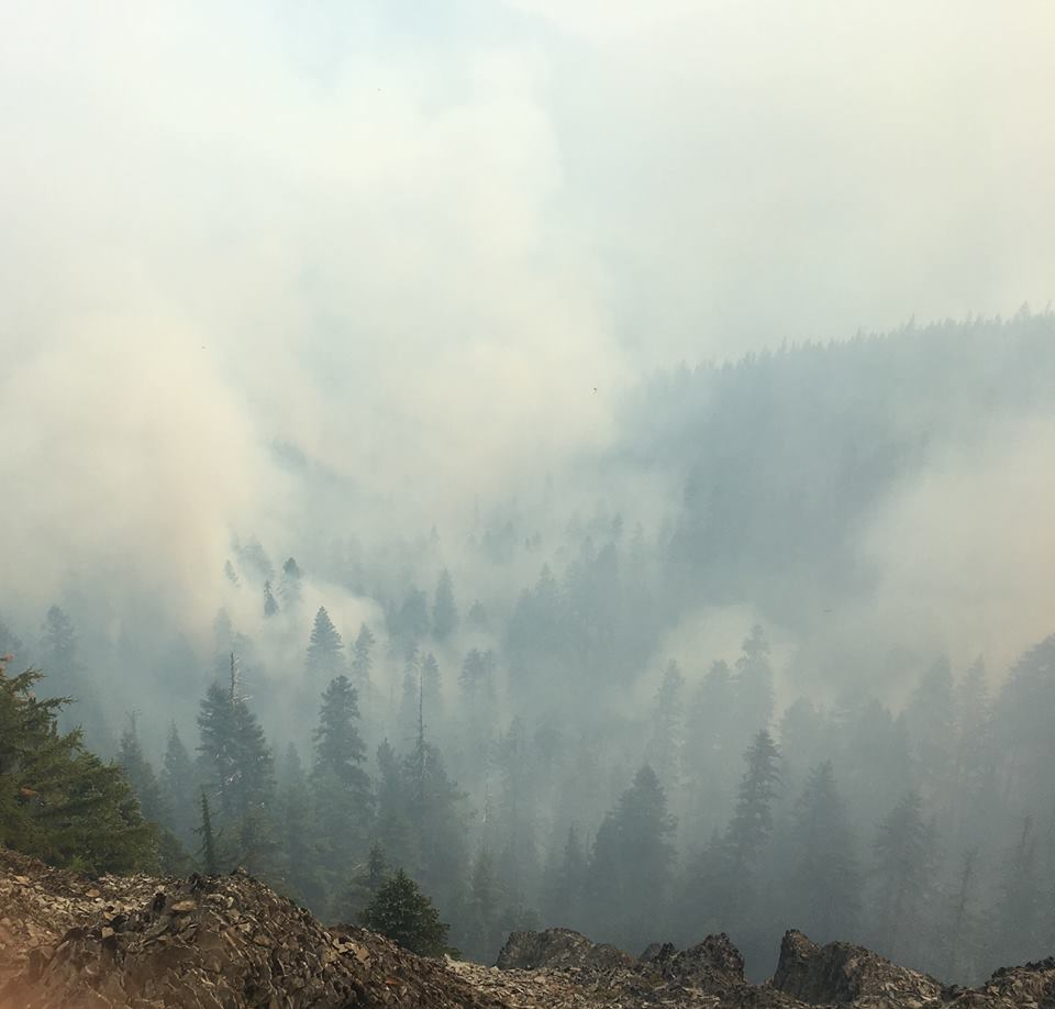 Located in the northeast corner of the Rogue-Umpqua Divide Wilderness near Rattlesnake Mountain and Fish Creek, the Rattlesnake Fire is now over 300 acres. (Photo courtesy Ben Sanders, Kings Peak Wildland Fire Module via Umpqua National Forest)