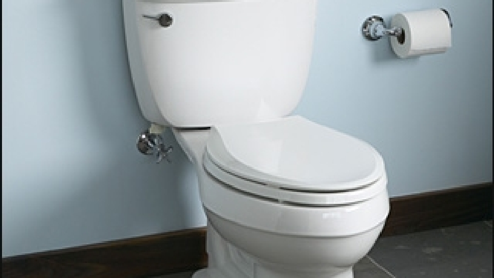 Burglar targets Denver-area businesses\' toilets | KATU