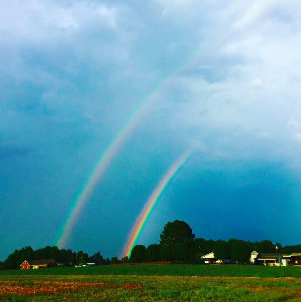 IMAGE: IG user @edrabin / POST: #doublerainbow #freakout #doublerainbowbitches #benson #northcarolina