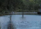 Bees Ferry flooding 7 (WCIV).png