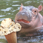 Graeter's introduces 'Chunky Hippo' ice cream to Columbus