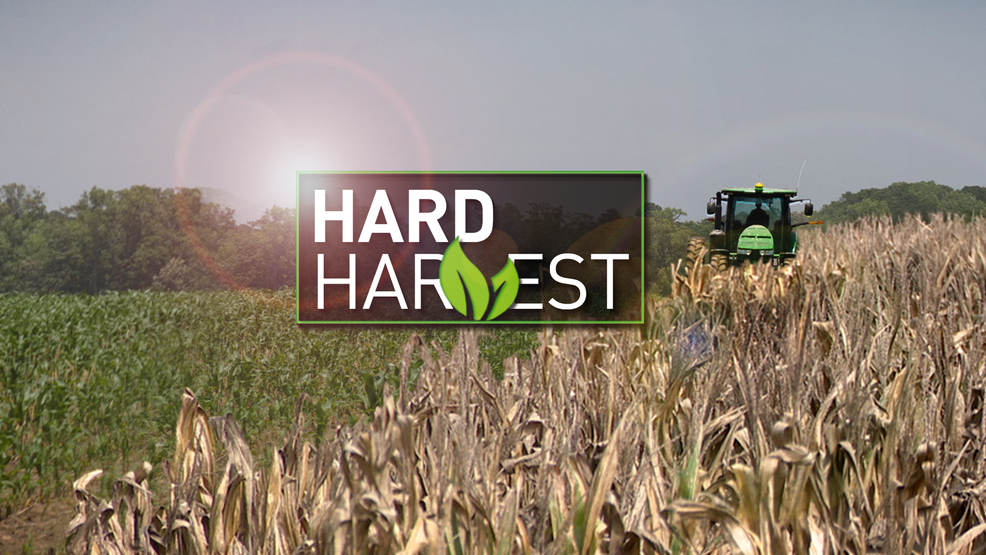 Hard_Harvest_MONITOR.png
