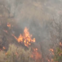 Crews continue fighting Coal Hollow Fire; burning 18,000 acres, 0 percent contained