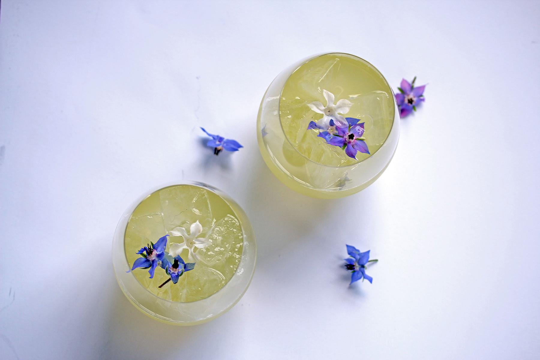 "Vain Desires: Mingles vodka with fermented cucumber soda, grapefruit, elderflower, sugarcane and borage flower. ""...with vain desires the pensive alcea burns, and, like Eloisa, loves and mourns. The freckled Iris owns a fiercer flame, and three unjealous husbands wed the dame."" (Image: Jai Williams)"