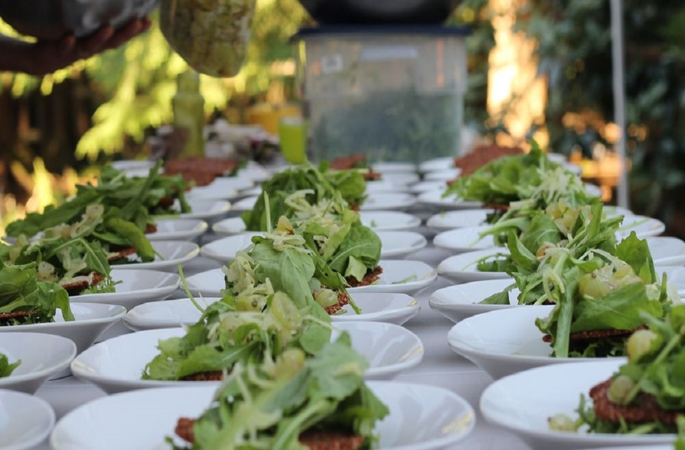 Fresh salads being made at the Sutra farm. (Photo Courtesy: Sutra)