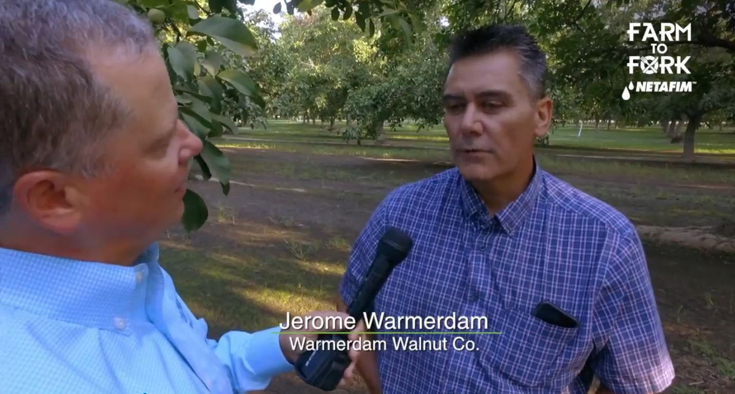 In this segment of Farm to Fork, Rich Kreps, a certified crop advisor with Ultra Gro, talks with Jerome Warmerday of Warmerdam Walnut Co. in Hanford.