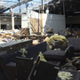 Reality sets in for business owners following devastating Wilkes-Barre Twp. tornado