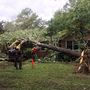 Storm damages homes in Houston County
