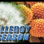 Sinclair Cares: Relief for seasonal allergies