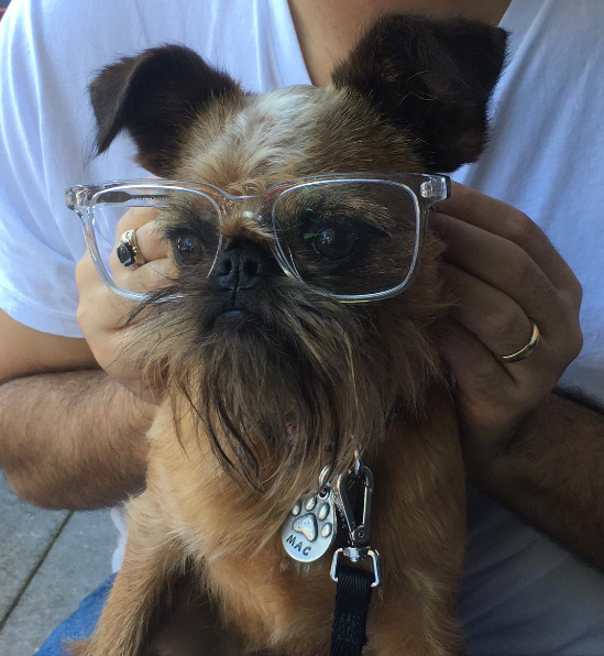 IMAGE: IG user @macofdc / POST: Let me get this straight big man... If I wear these that group of cute ladies over there will give me all the numbers? @warbybarker #donthatetheplayerhatetheframes #warbybarker #warbyparker