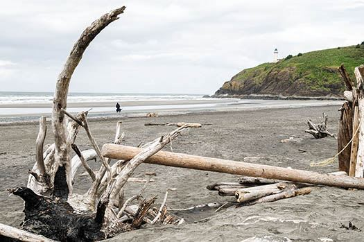 At the intersection of the Pacific Ocean and the Columbia River, Cape Disappointment is home to the Lewis & Clark interpretive center and filled with Northwest history. (Image: Washington State Parks)