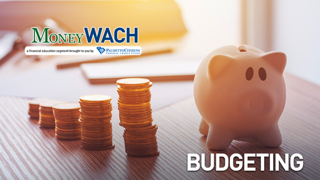 MoneyWACH - Budgeting