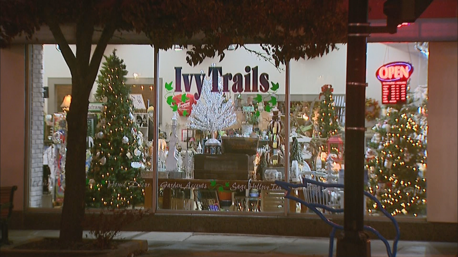 More than 30 downtown Manitowoc storefront windows display vintage aluminum Christmas trees for the Evergleams on Eighth, November 17, 2017. (WLUK)