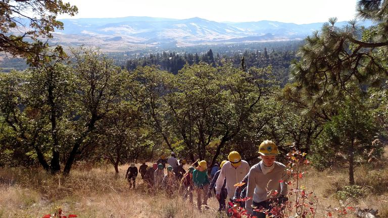 Photo by Maureen Battistella<br>Young men and women fan out to pull weeds in the Ashland watershed near Acid Castle.
