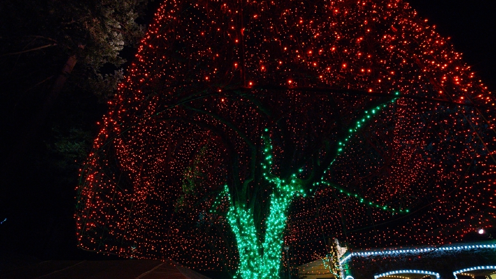 which neighborhoods have the best holiday lights