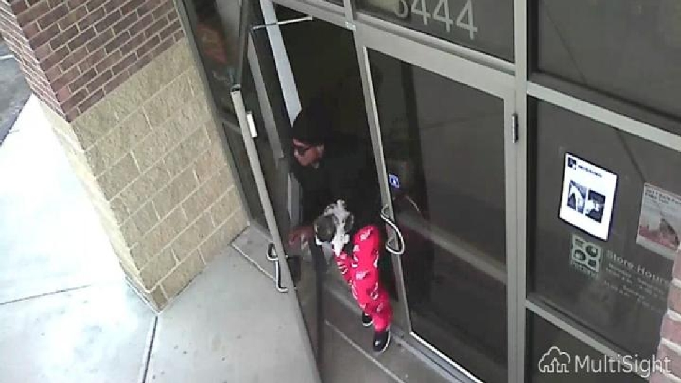 Man snatches 12-week-old puppy from pet store | WRGT
