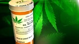 Arkansas gets first medical pot dispensary application