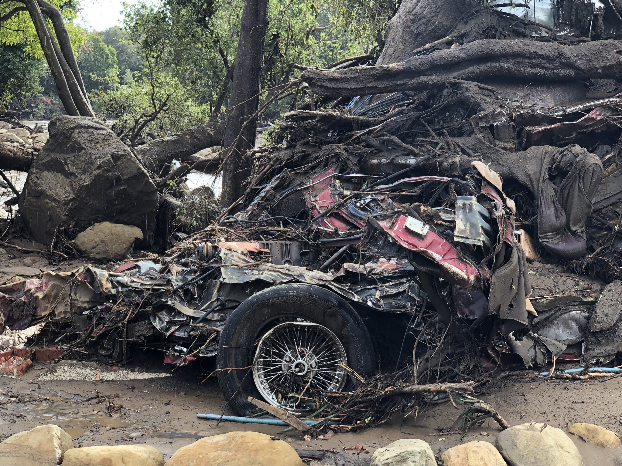 A vehicle was wrapped and tangled around a tree by the force of deadly flood waters on Hot Springs Road in Montecito.(Photo & Caption: Mike Eliason, Santa Barbara County Fire Dept.)