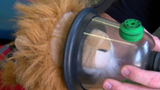 Austin-Travis County EMS receives pet oxygen mask donation