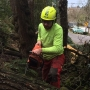 'We'll be cleaning up after this all year': Dec. 14 ice storm damage a work in progress