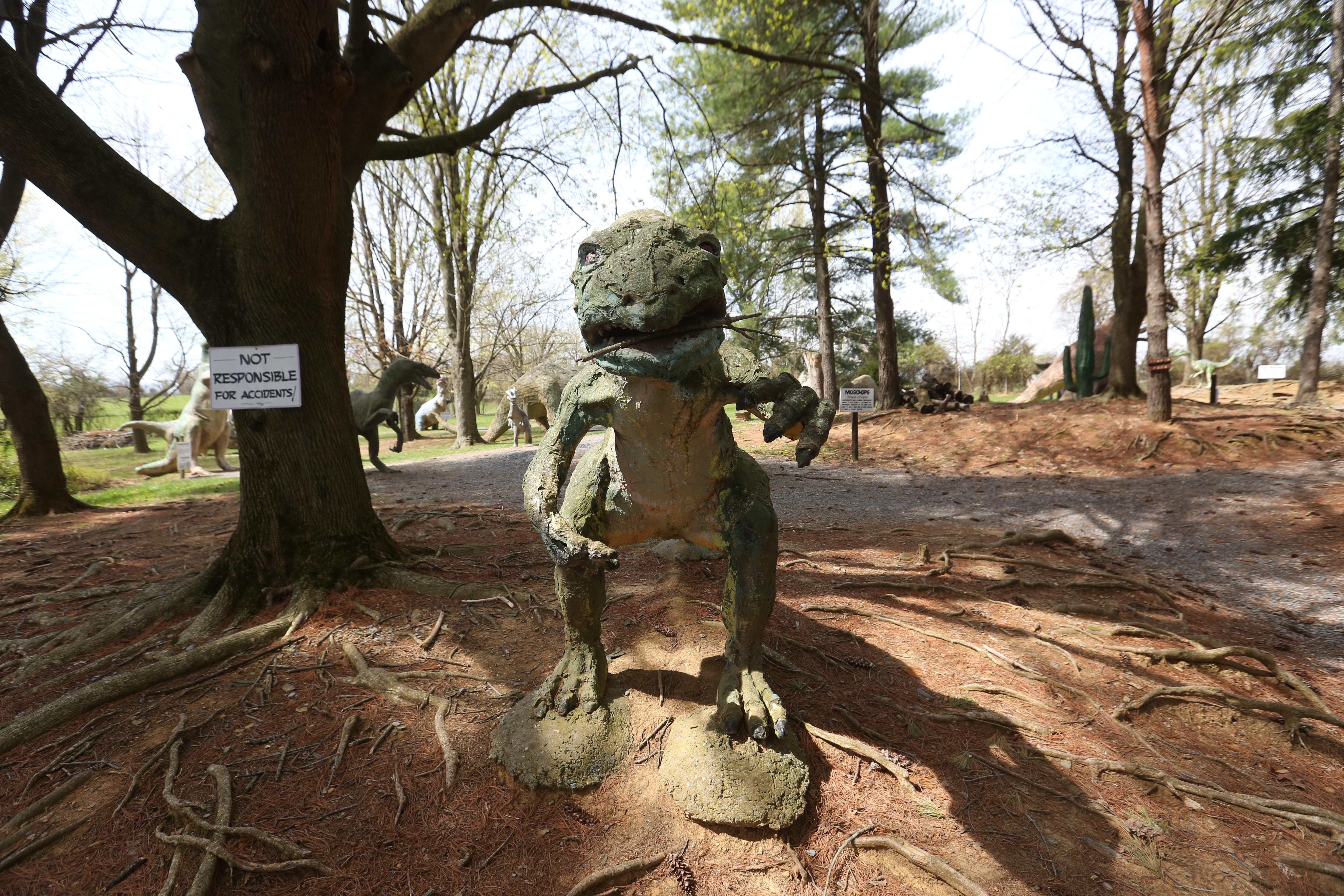 White Plains, Virginia, is home to the delightfully kitschy Dinosaur Land, a roadside mainstay off of route 522. The gift shop and mini-theme park features over 50 dinosaurs that its owners have accumulated since its opening in 1963. Some of the dinos aren't in great shape, but this mom-and-pop stop makes you feel like you've stepped back a few decades to a simpler time. (Amanda Andrade-Rhoades/DC Refined)