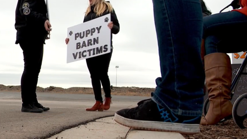 Protesters gather at Utah County pet store after woman buys sick puppy from them