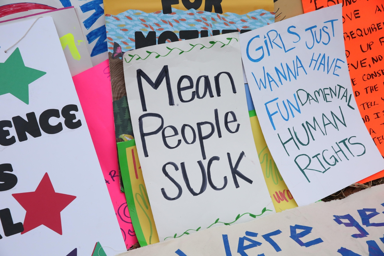 The Women's March on Washington had a serious message and a defined purpose, but some protest signs stood out from the crowd. Some of the signs were clever and pun-tastic, but other protestors used the space to bear their souls. (Amanda Andrade-Rhoades/DC Refined)