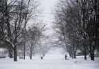 Wintry Weather Michig_Town (1).jpg