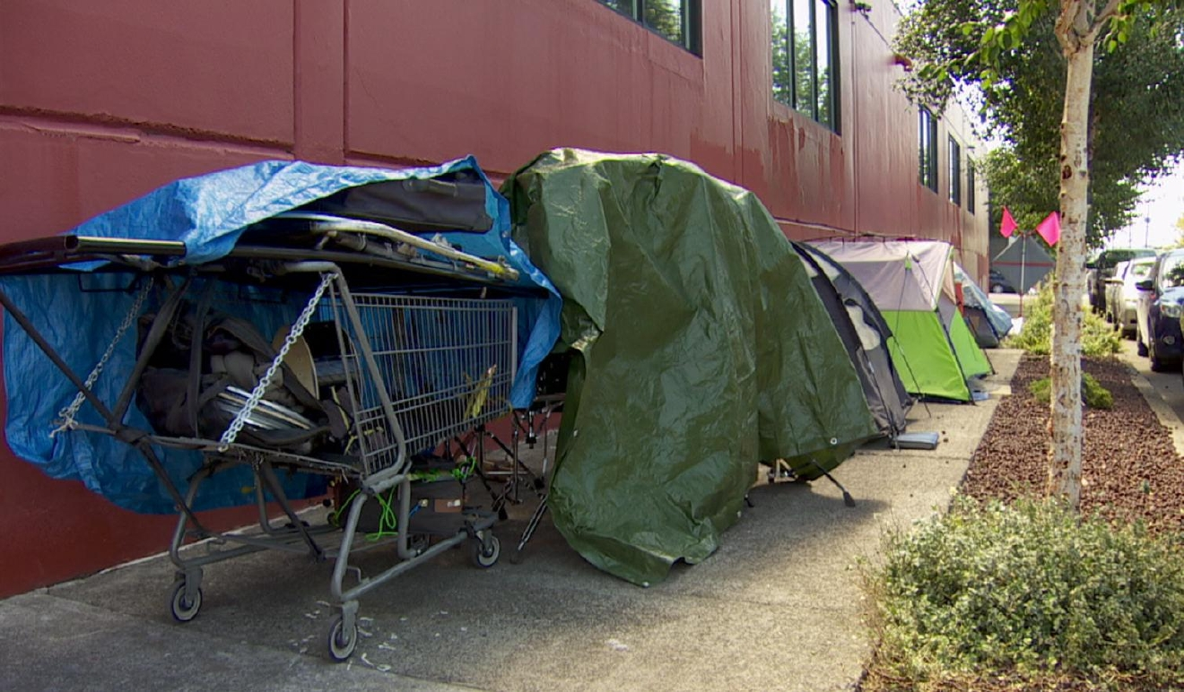 Homeless campers in SE Portland (KATU photo).