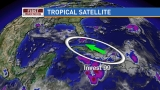 Invest 99 not dead yet