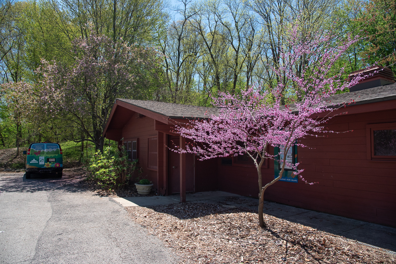 Just outside the woods sits the tiny Avon Woods Nature Center. It's used as a place where people gather for park-related events, such as various educational programs. Visitors can find information about upcoming events on the bulletin board outside the center. / Image: Phil Armstrong, Cincinnati Refined // Published: 4.25.19