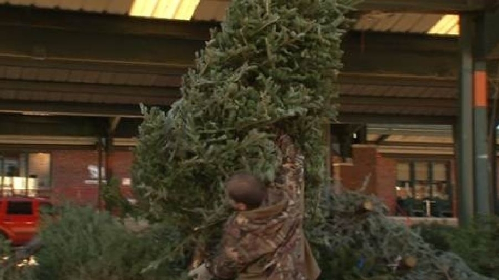 Real Christmas trees can be dropped off for recycling Jan. 7 at Capitol Market | WCHS