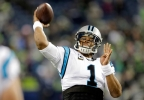 Panthers_Seahawks_Football__vcatalani@fisherinteractive.com_14.jpg