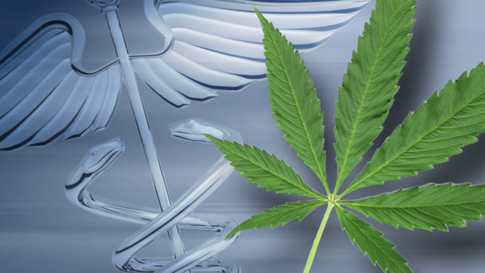 ethics of medical marijuana essays Essay on medical assistant ethics there are numerous ethical issues that a medical assistant may encounter in a daily office or hospital setting it is unethical to have a conversation with a fellow coworker regarding a patient.