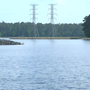 Conway and Santee Cooper agree to let Lake Busbeereturn to wetlands