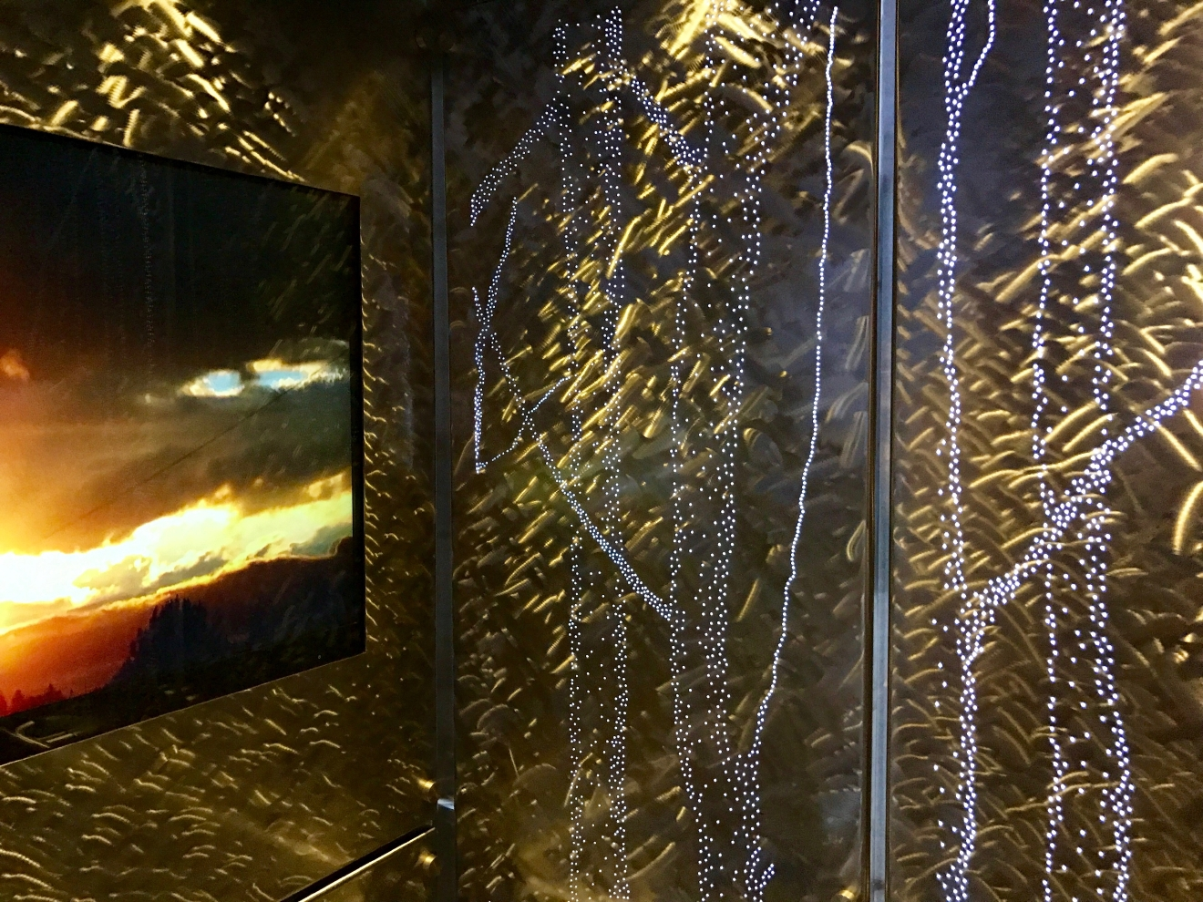 Yup - even the elevators have the woods themed! It's a little hard to tell in a photo, but interiors are lit up with tree outlines. (Image: Britt Thorson / Seattle Refined)