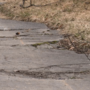City commissioners reject Traverse City sidewalk repair project