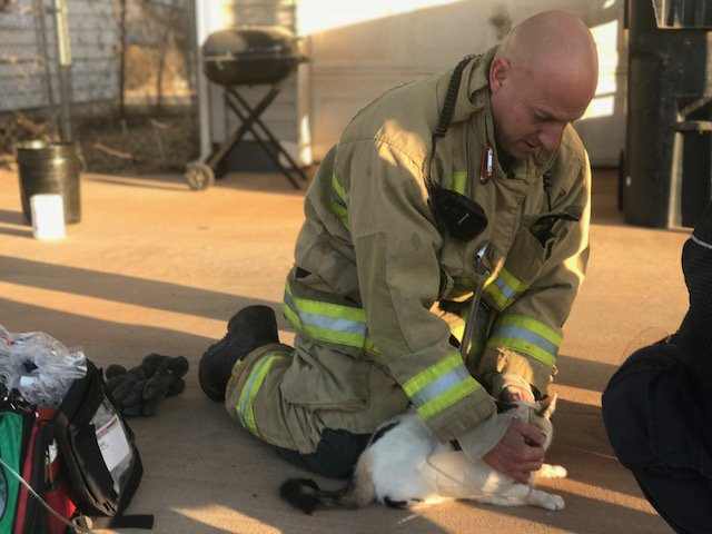 OKCFD personnel give oxygen to cat that was trapped in smoke-filled house in 1300 block of SE 40th St. (Oklahoma City Fire Department)