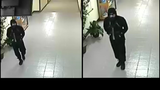 Police: Male dressed in black destroys property, steals from Liberty Christian School
