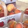 Organizers makes adjustments to Porter Peach Festival following extreme weather