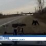 Dash cam video reveals chase that ended with Mich. State Trooper being attacked