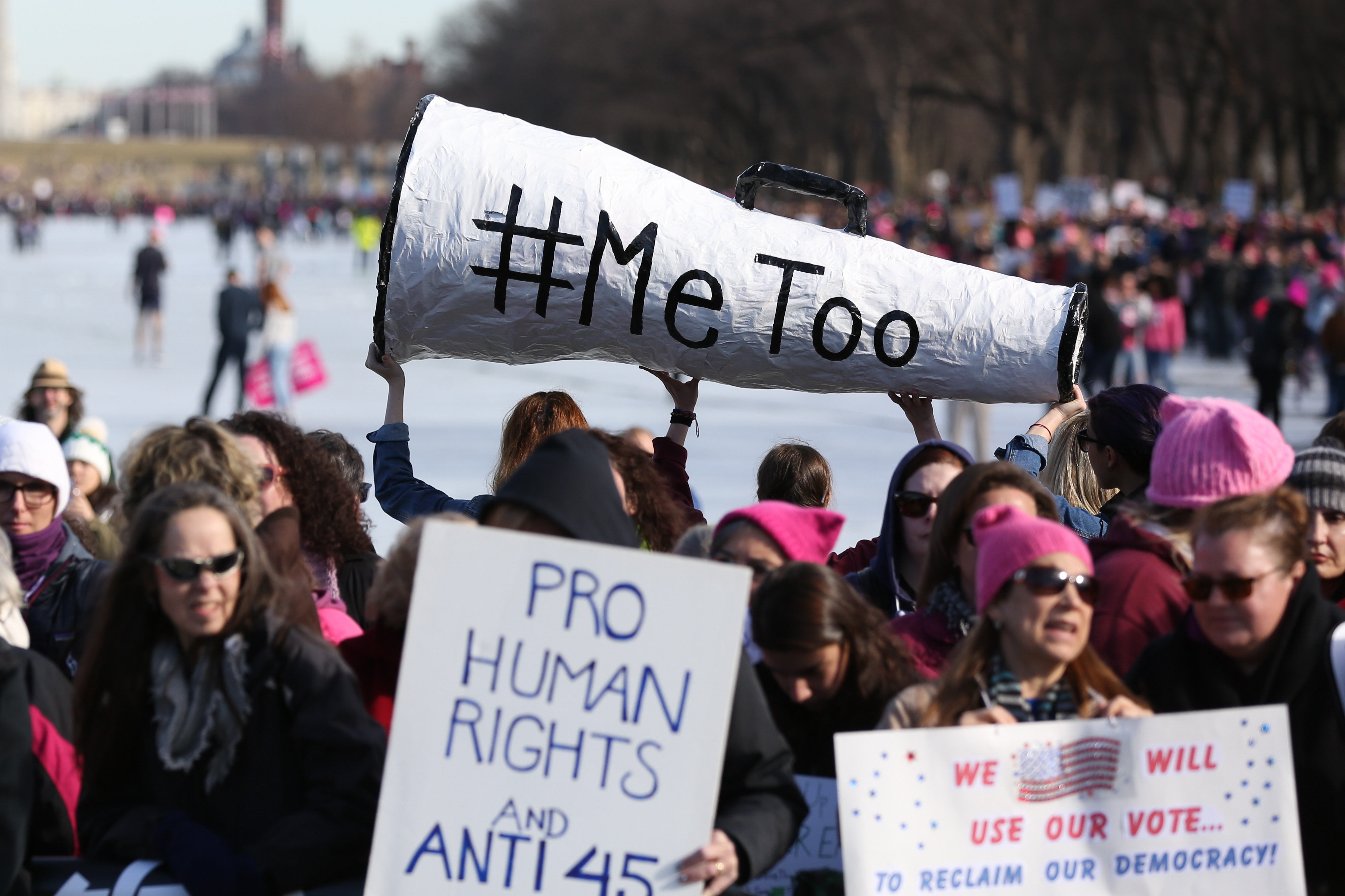 With the advent of the #MeToo movement, there was even more discussion of sexual assault and harassment at this year's march. (Amanda Andrade-Rhoades/DC Refined)